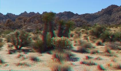 Indian Cove Western Wilderness 1080p 3DA DSCF7051