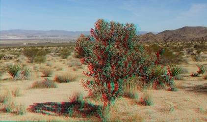 Indian Cove Western Wilderness 1080p 3DA DSCF7194