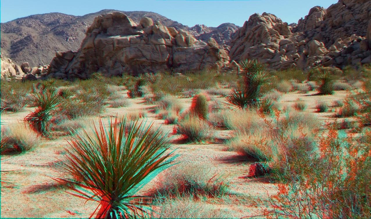 Indian Cove Western Wilderness 1080p 3DA DSCF7215