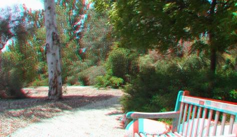 Huntington Australia Garden 3DA 1080p DSCF1622