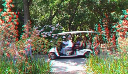 Huntington Australia Garden 3DA 1080p DSCF1763