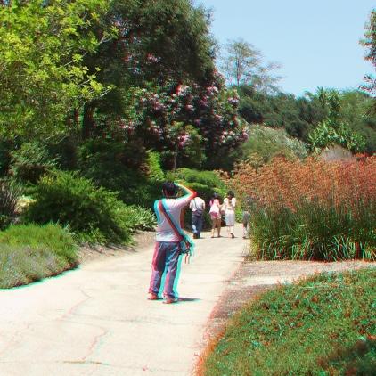 Huntington Australia Garden 3DA 1080p DSCF1808