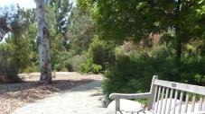 Huntington Australia Garden DSCF1622