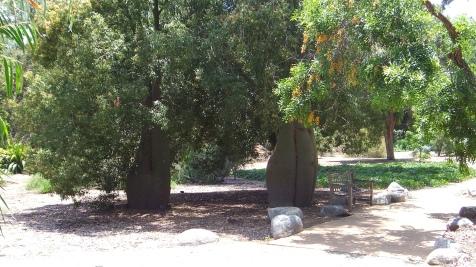 Huntington Australia Garden DSCF1733