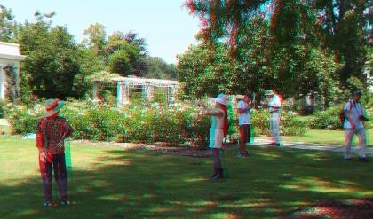 Huntington Rose Garden 3DA 1080p DSCF0281