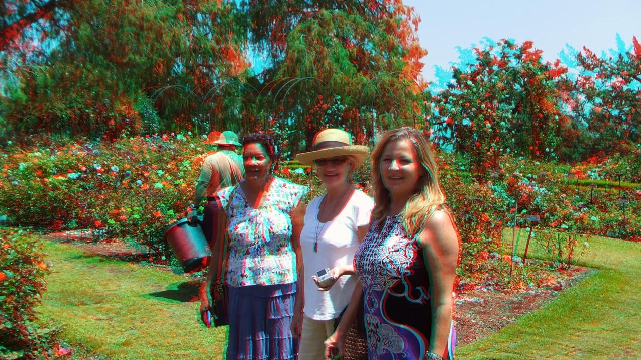 Huntington Rose Garden 3DA 1080p DSCF0306a