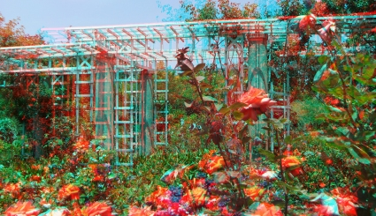 Huntington Rose Garden 3DA 1080p DSCF1071a