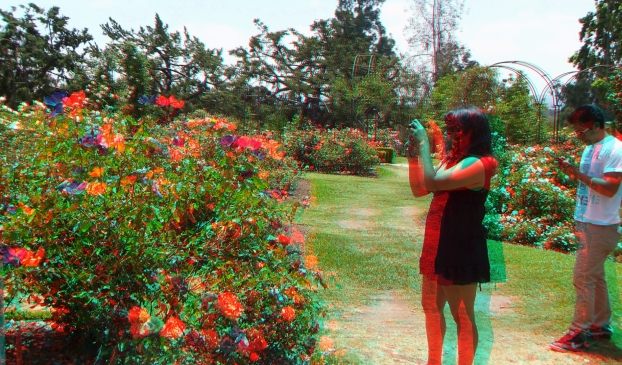 Huntington Rose Garden 3DA 1080p DSCF1116