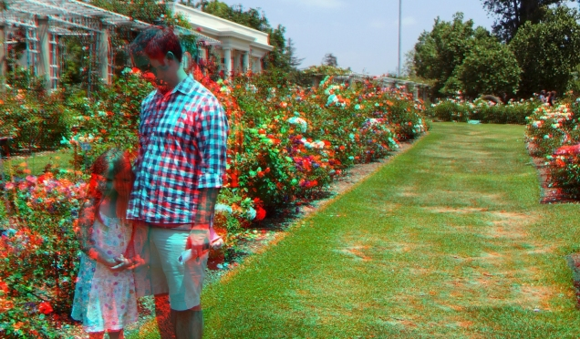 Huntington Rose Garden 3DA 1080p DSCF1161