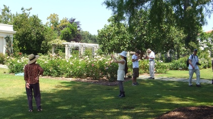 Huntington Rose Garden DSCF0281
