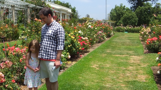 Huntington Rose Garden DSCF1161