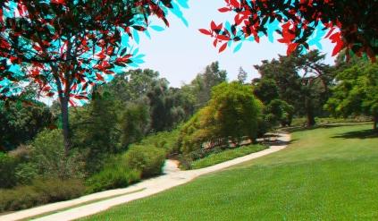Huntington Subtropical Garden 3DA 1080p DSCF0264