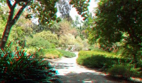 Huntington Subtropical Garden 3DA 1080p DSCF1354
