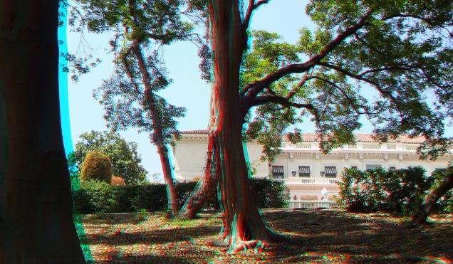Huntington Subtropical Garden 3DA 1080p DSCF1459