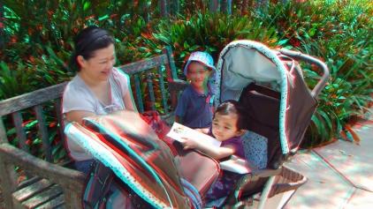 Huntington Subtropical Garden 3DA 1080p DSCF1483