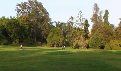 Huntington Subtropical Garden 3DA 1080p DSCF7455