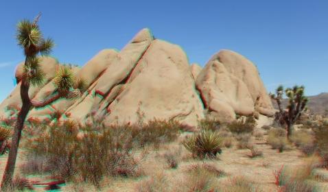 Fugly Joshua Tree NP 3DA 1080p DSCF7364