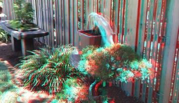 Huntington Bonsai Garden 3DA 1080p DSCF2280