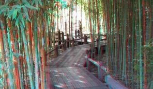 Huntington Japanese Garden 3DA 1080p DSCF0082