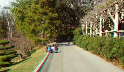 Huntington Japanese Garden 3DA 1080p DSCF1342