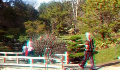 Huntington Japanese Garden 3DA 1080p DSCF1344