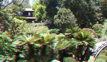 Huntington Japanese Garden 3DA 1080p DSCF2095