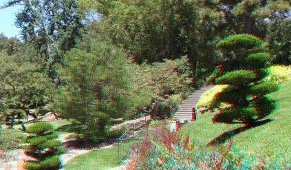Huntington Japanese Garden 3DA 1080p DSCF2110