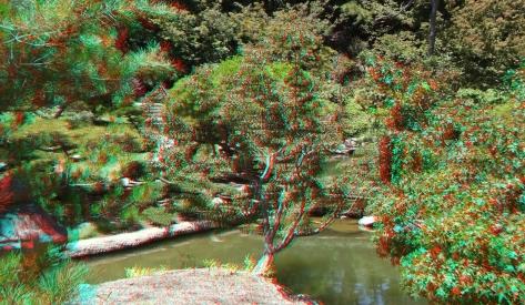 Huntington Japanese Garden 3DA 1080p DSCF2116