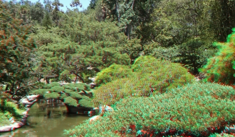 Huntington Japanese Garden 3DA 1080p DSCF2128