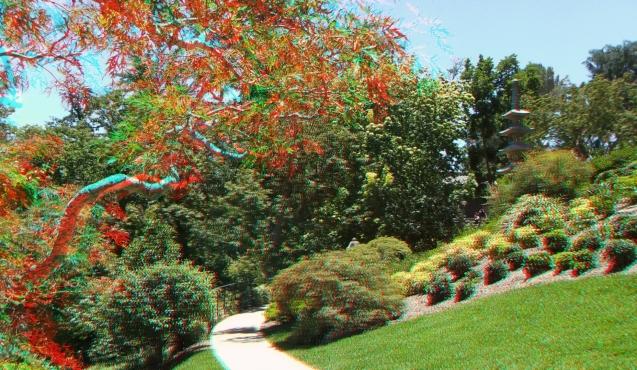 Huntington Japanese Garden 3DA 1080p DSCF2140