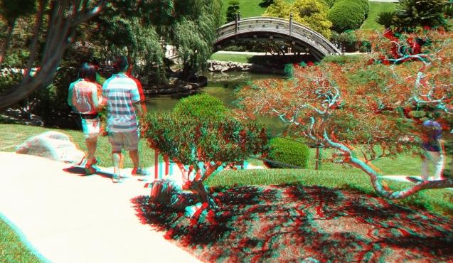 Huntington Japanese Garden 3DA 1080p DSCF2148