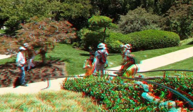 Huntington Japanese Garden 3DA 1080p DSCF2154