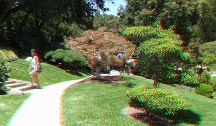 Huntington Japanese Garden 3DA 1080p DSCF2163