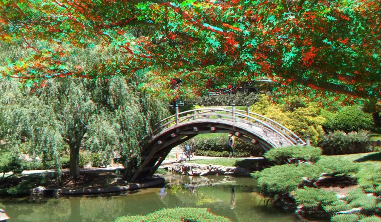 Huntington Japanese Garden 3DA 1080p DSCF2172