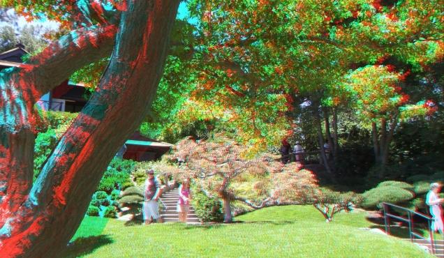Huntington Japanese Garden 3DA 1080p DSCF2181