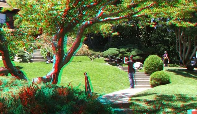 Huntington Japanese Garden 3DA 1080p DSCF2185