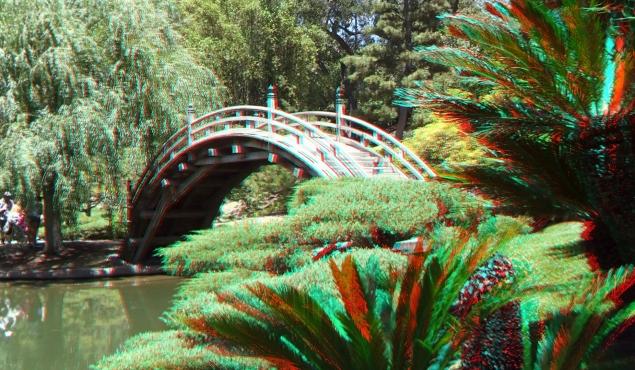 Huntington Japanese Garden 3DA 1080p DSCF2186
