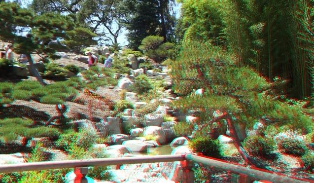 Huntington Japanese Garden 3DA 1080p DSCF2315