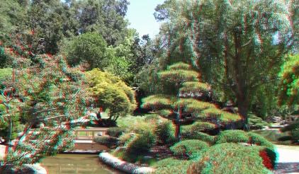 Huntington Japanese Garden 3DA 1080p DSCF2321