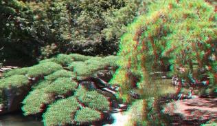 Huntington Japanese Garden 3DA 1080p DSCF2326