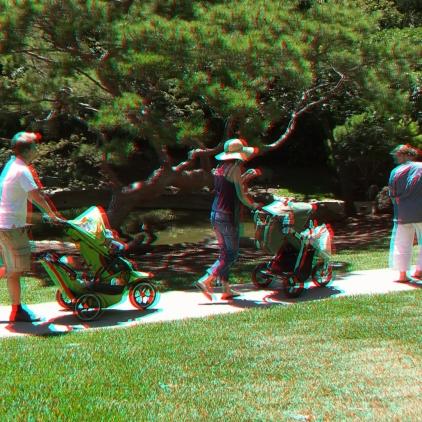 Huntington Japanese Garden 3DA 1080p DSCF2330