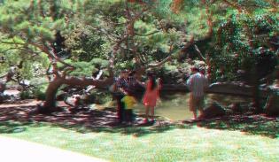 Huntington Japanese Garden 3DA 1080p DSCF2348