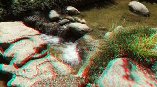 Huntington Japanese Garden 3DA 1080p DSCF2357