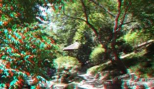Huntington Japanese Garden 3DA 1080p DSCF2364