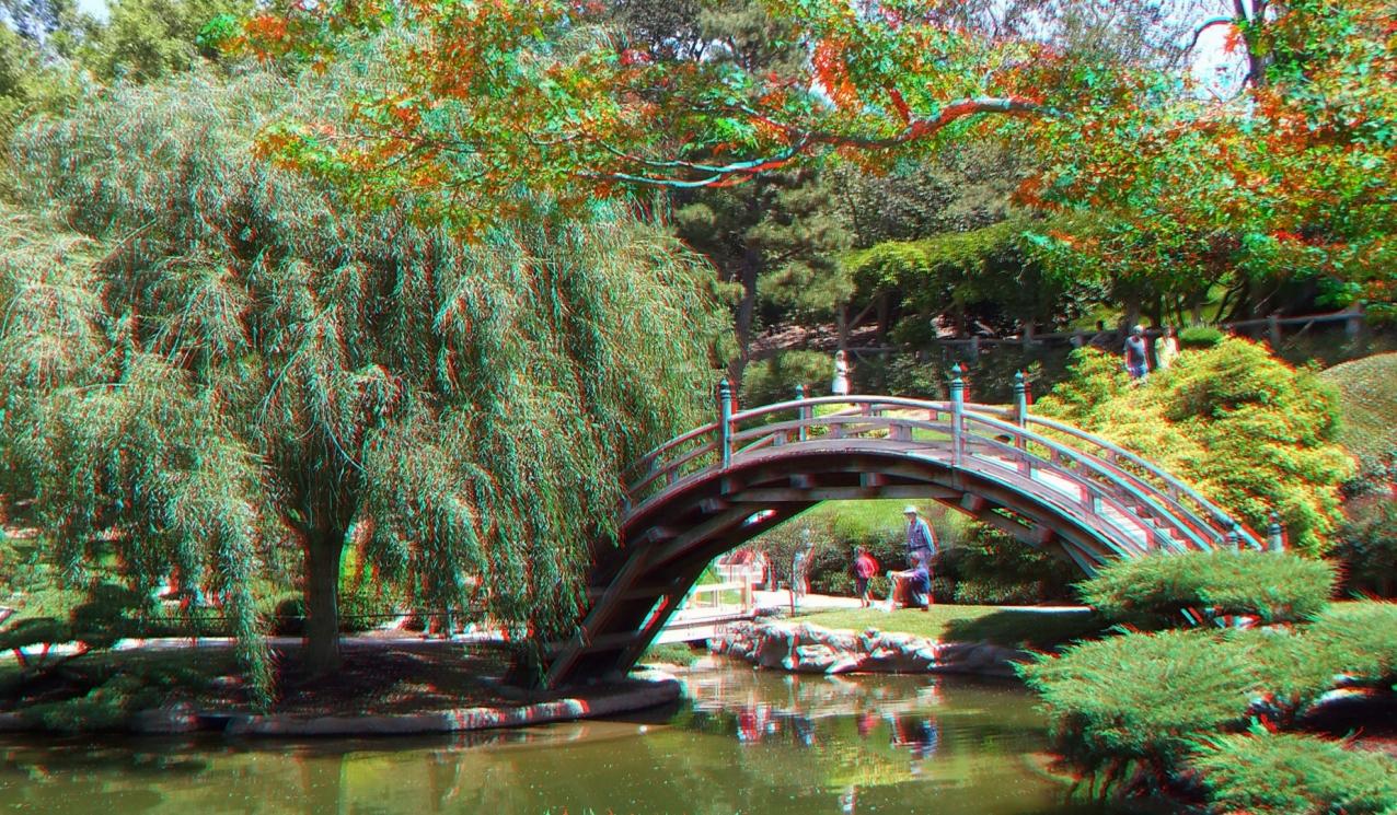 Huntington Japanese Garden 3DA 1080p DSCF3011