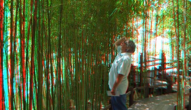 Huntington Japanese Garden 3DA 1080p DSCF3020
