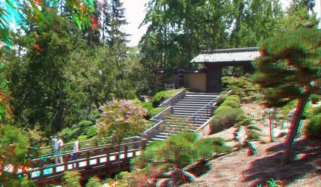 Huntington Japanese Garden 3DA 1080p DSCF3022
