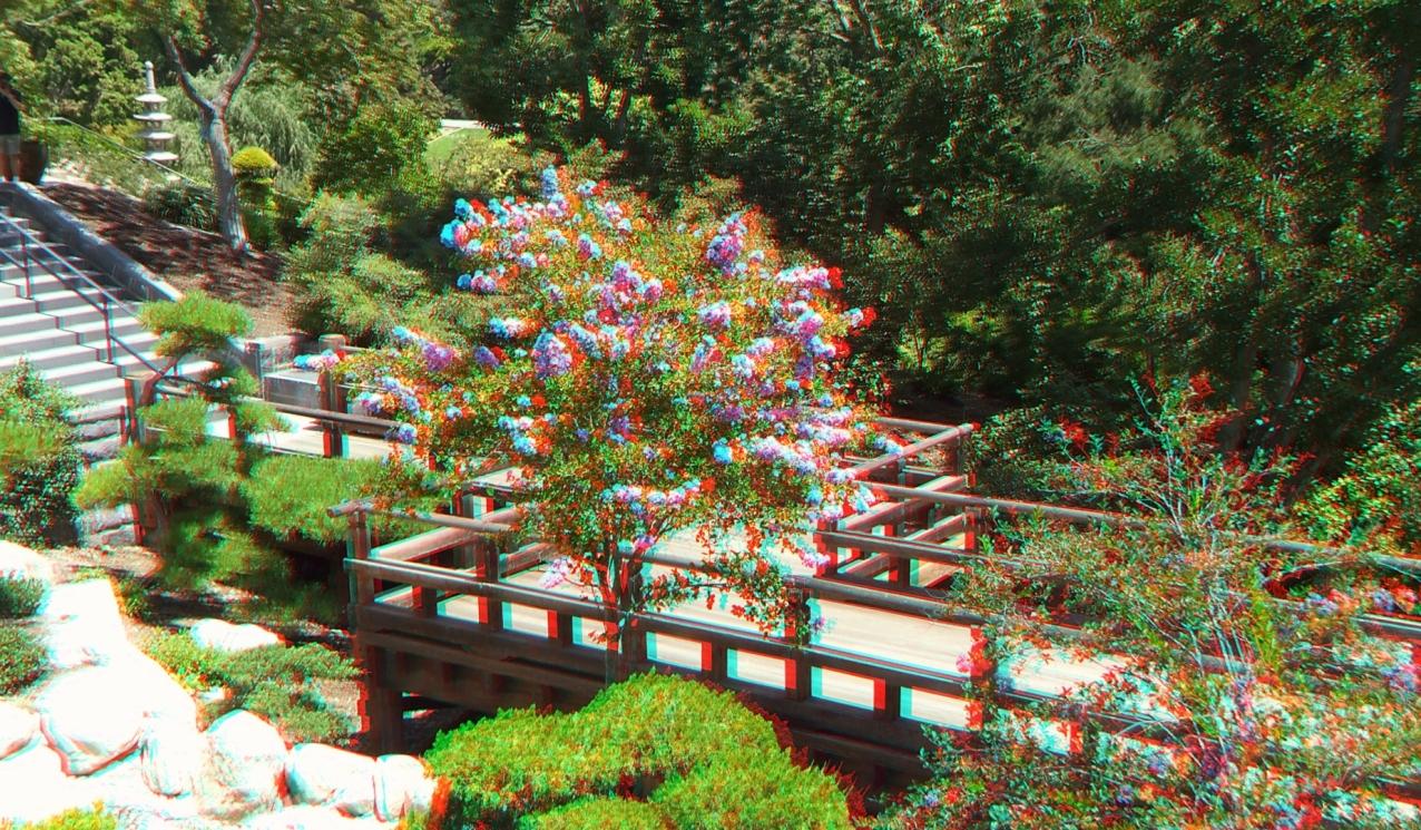 Huntington Japanese Garden 3DA 1080p DSCF3023