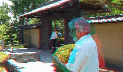 Huntington Japanese Garden 3DA 1080p DSCF3024