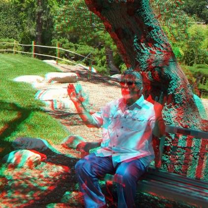 Huntington Japanese Garden 3DA 1080p DSCF3029